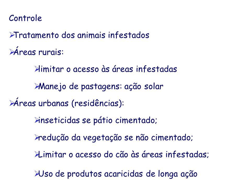 Controle Tratamento dos animais infestados Áreas rurais: limitar o acesso às áreas infestadas Manejo de pastagens: ação solar Áreas urbanas (residênci