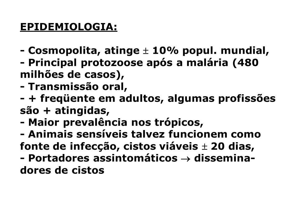 EPIDEMIOLOGIA: - Cosmopolita, atinge 10% popul. mundial, - Principal protozoose após a malária (480 milhões de casos), - Transmissão oral, - + freqüen