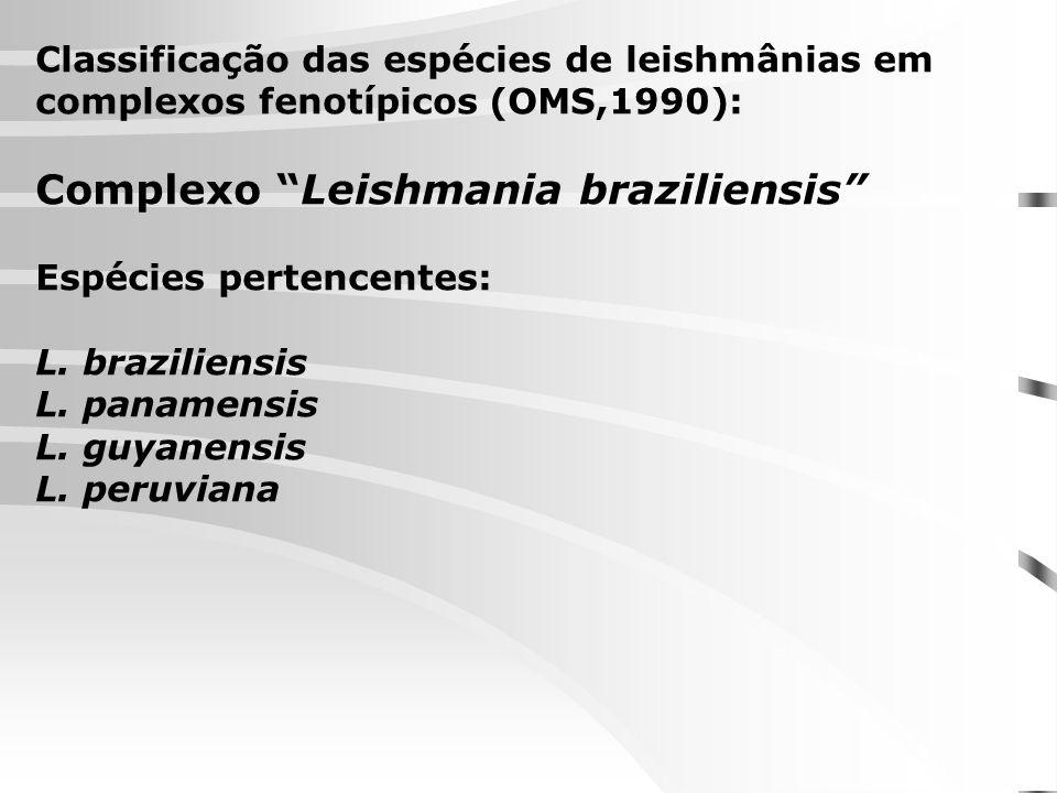 Classificação das espécies de leishmânias em complexos fenotípicos (OMS,1990): Complexo Leishmania braziliensis Espécies pertencentes: L. braziliensis