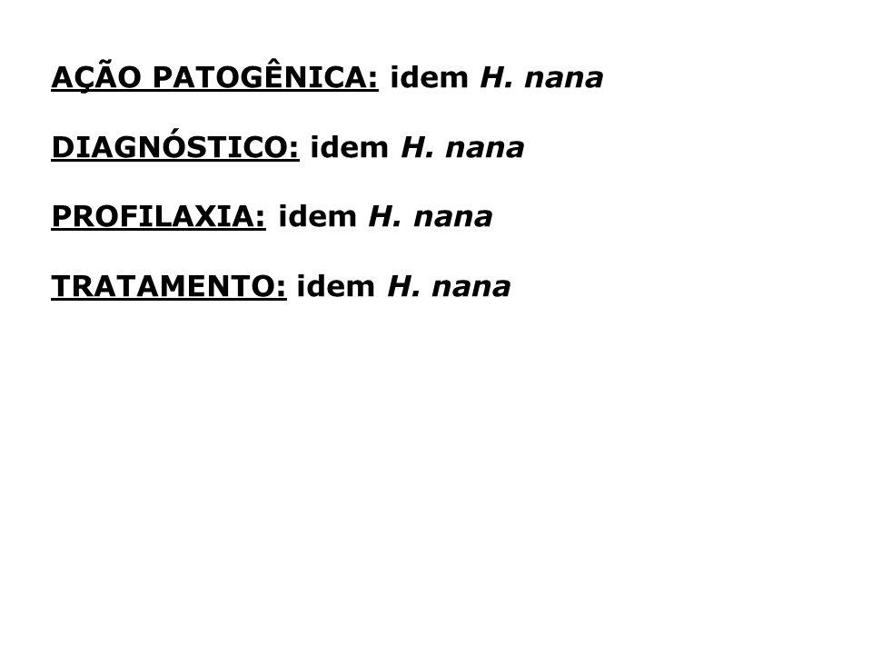 AÇÃO PATOGÊNICA: idem H. nana DIAGNÓSTICO: idem H. nana PROFILAXIA: idem H. nana TRATAMENTO: idem H. nana