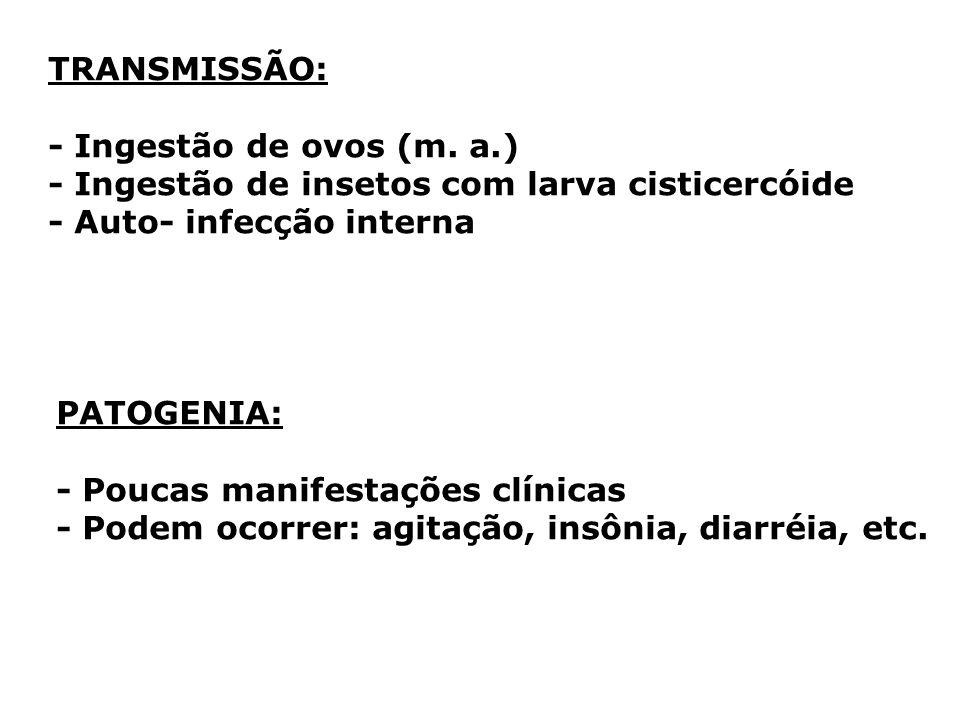 TRANSMISSÃO: - Ingestão de ovos (m. a.) - Ingestão de insetos com larva cisticercóide - Auto- infecção interna PATOGENIA: - Poucas manifestações clíni