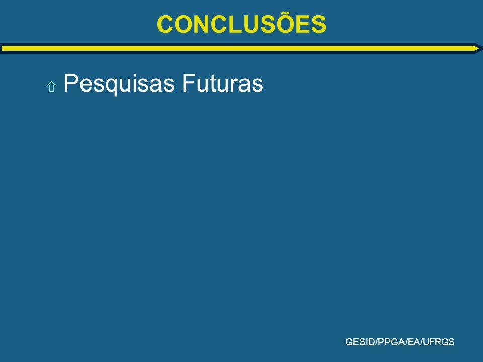 GESID/PPGA/EA/UFRGS CONCLUSÕES ñ Pesquisas Futuras