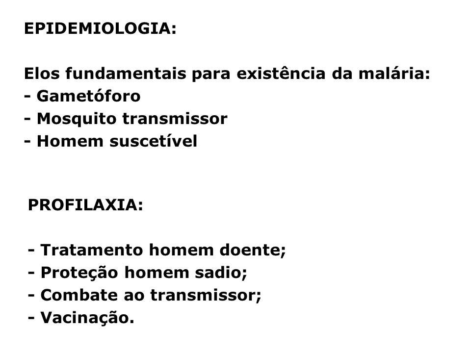 EPIDEMIOLOGIA: Elos fundamentais para existência da malária: - Gametóforo - Mosquito transmissor - Homem suscetível PROFILAXIA: - Tratamento homem doe