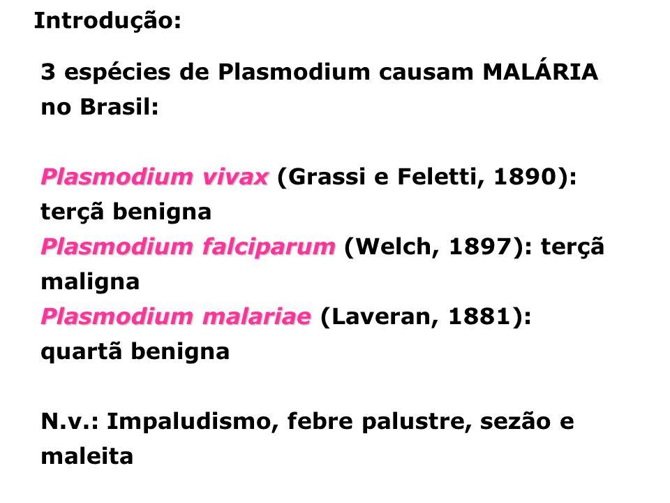3 espécies de Plasmodium causam MALÁRIA no Brasil: Plasmodium vivax Plasmodium vivax (Grassi e Feletti, 1890): terçã benigna Plasmodium falciparum Plasmodium falciparum (Welch, 1897): terçã maligna Plasmodium malariae Plasmodium malariae (Laveran, 1881): quartã benigna N.v.: Impaludismo, febre palustre, sezão e maleita Introdução: