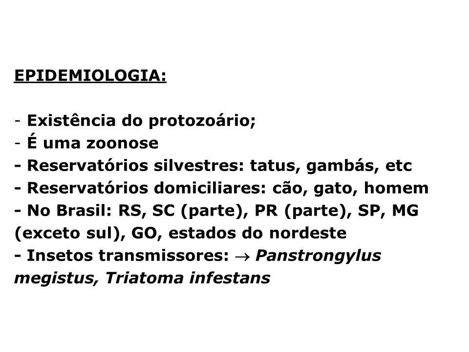 EPIDEMIOLOGIA: - Existência do protozoário; - É uma zoonose - Reservatórios silvestres: tatus, gambás, etc - Reservatórios domiciliares: cão, gato, ho