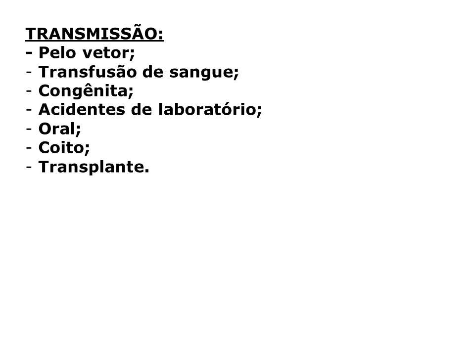 TRANSMISSÃO: - Pelo vetor; - Transfusão de sangue; - Congênita; - Acidentes de laboratório; - Oral; - Coito; - Transplante.