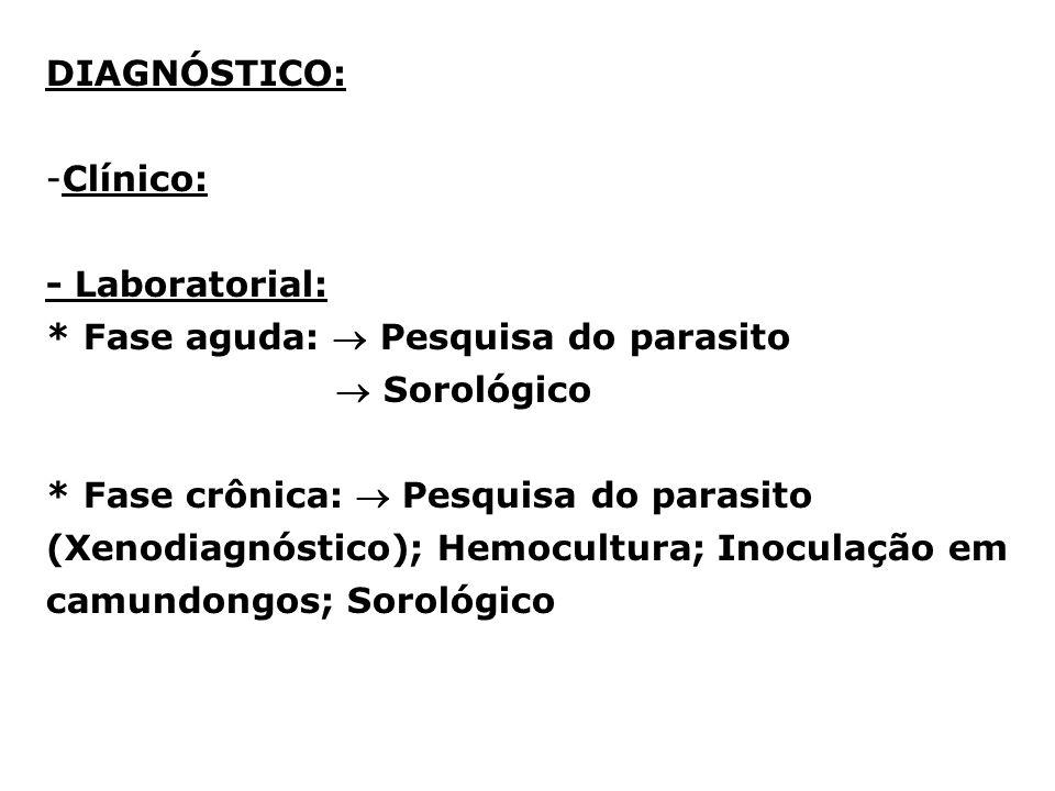 DIAGNÓSTICO: -Clínico: - Laboratorial: * Fase aguda: Pesquisa do parasito Sorológico * Fase crônica: Pesquisa do parasito (Xenodiagnóstico); Hemocultu