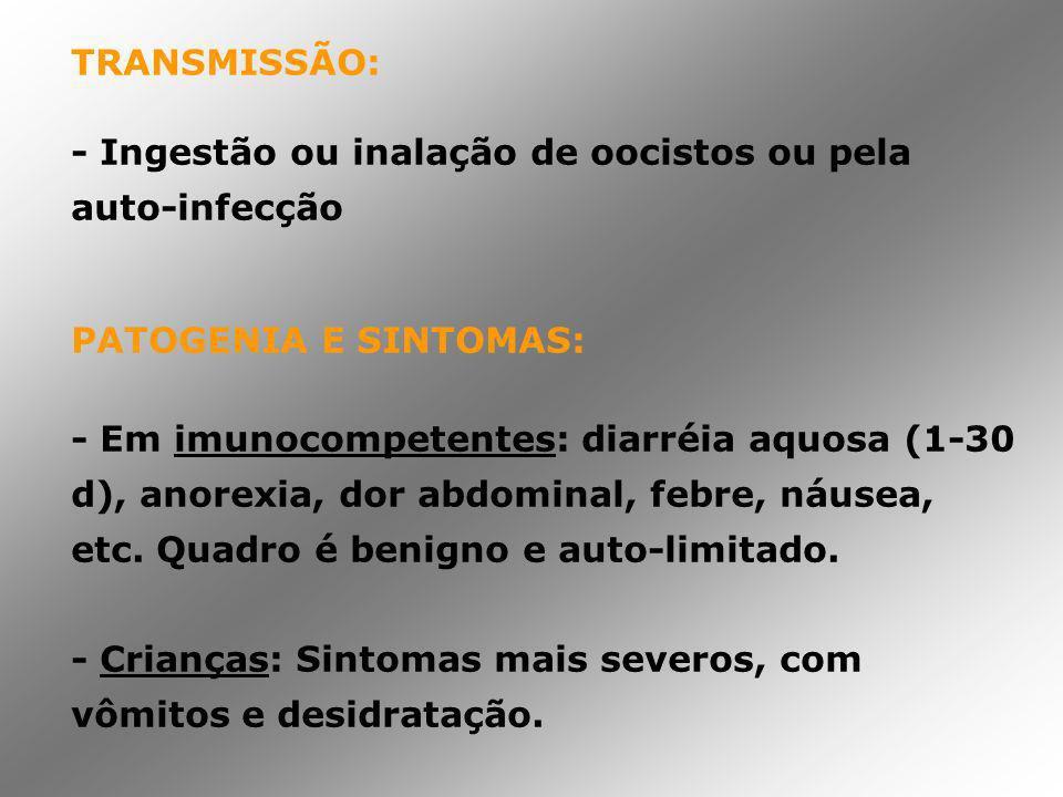 TRANSMISSÃO: - Ingestão ou inalação de oocistos ou pela auto-infecção PATOGENIA E SINTOMAS: - Em imunocompetentes: diarréia aquosa (1-30 d), anorexia,