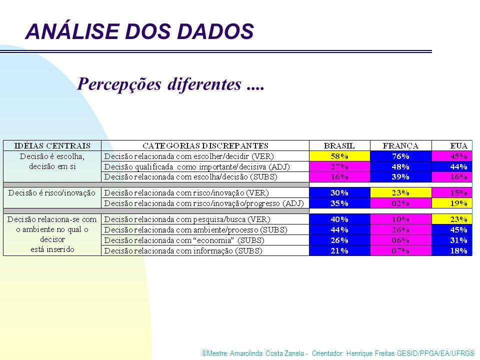 ©Mestre: Amarolinda Costa Zanela - Orientador: Henrique Freitas GESID/PPGA/EA/UFRGS Percepções diferentes.... ANÁLISE DOS DADOS