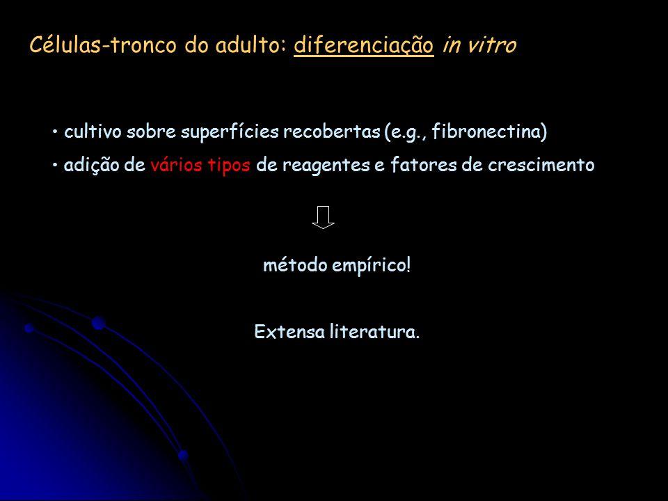 Células-tronco do adulto: diferenciação in vitro cultivo sobre superfícies recobertas (e.g., fibronectina) adição de vários tipos de reagentes e fator