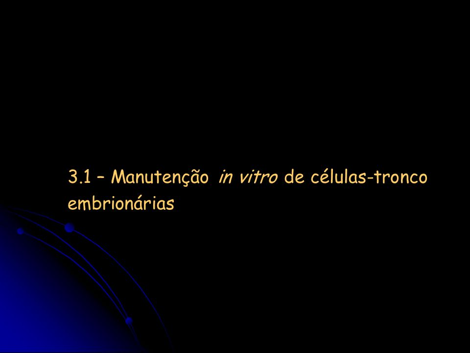 Células tronco embrionárias: manutenção in vitro primeiros experimentos: sobre camadas de células alimentadoras (MEF) 1988: mESC cultivadas com LIF 2001- : hESC cultivadas em meio semi-definido (MEF-condicionado + bFGF + Maqtrigel) procedimento laborioso