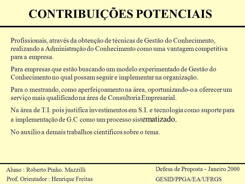 Aluno : Roberto Pinho. Mazzilli Prof. Orientador : Henrique Freitas Defesa de Proposta - Janeiro 2000 GESID/PPGA/EA/UFRGS CONTRIBUIÇÕES POTENCIAIS Pro