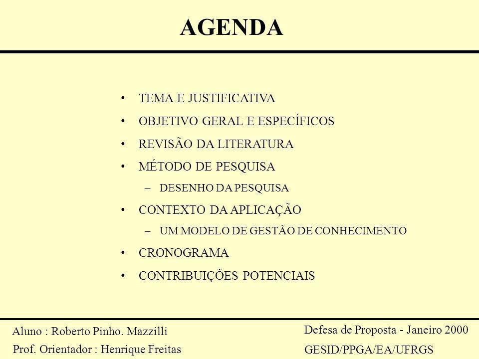 Aluno : Roberto Pinho. Mazzilli Prof. Orientador : Henrique Freitas Defesa de Proposta - Janeiro 2000 GESID/PPGA/EA/UFRGS AGENDA TEMA E JUSTIFICATIVA