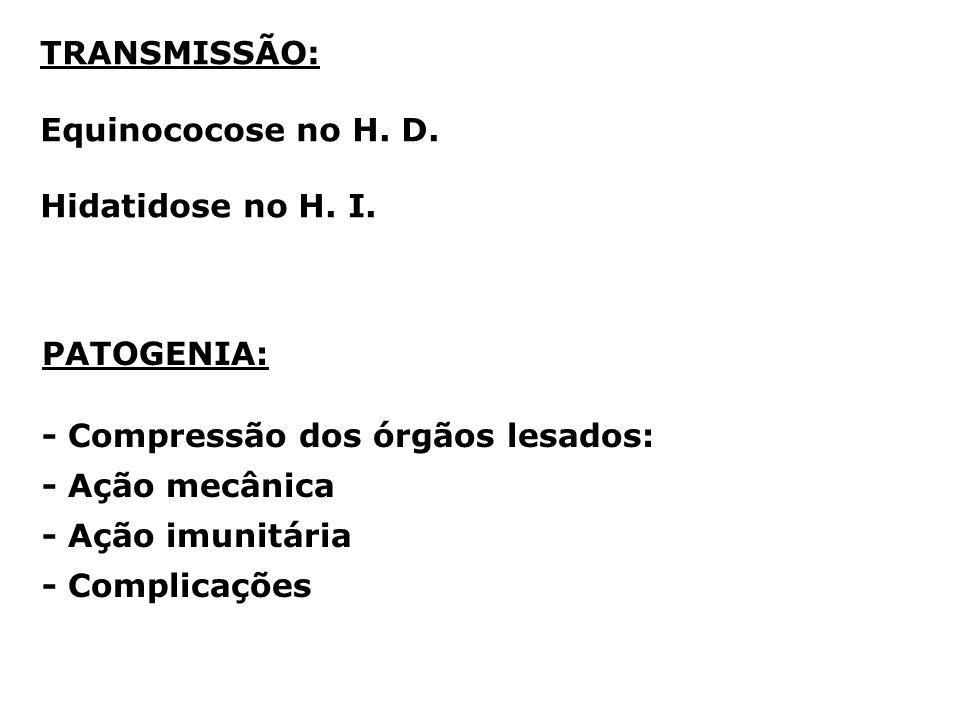 TRANSMISSÃO: Equinococose no H. D. Hidatidose no H. I. PATOGENIA: - Compressão dos órgãos lesados: - Ação mecânica - Ação imunitária - Complicações
