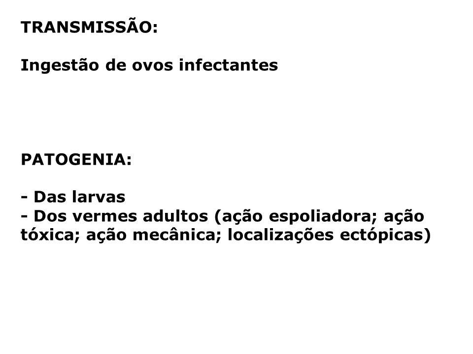 TRANSMISSÃO: Ingestão de ovos infectantes PATOGENIA: - Das larvas - Dos vermes adultos (ação espoliadora; ação tóxica; ação mecânica; localizações ect