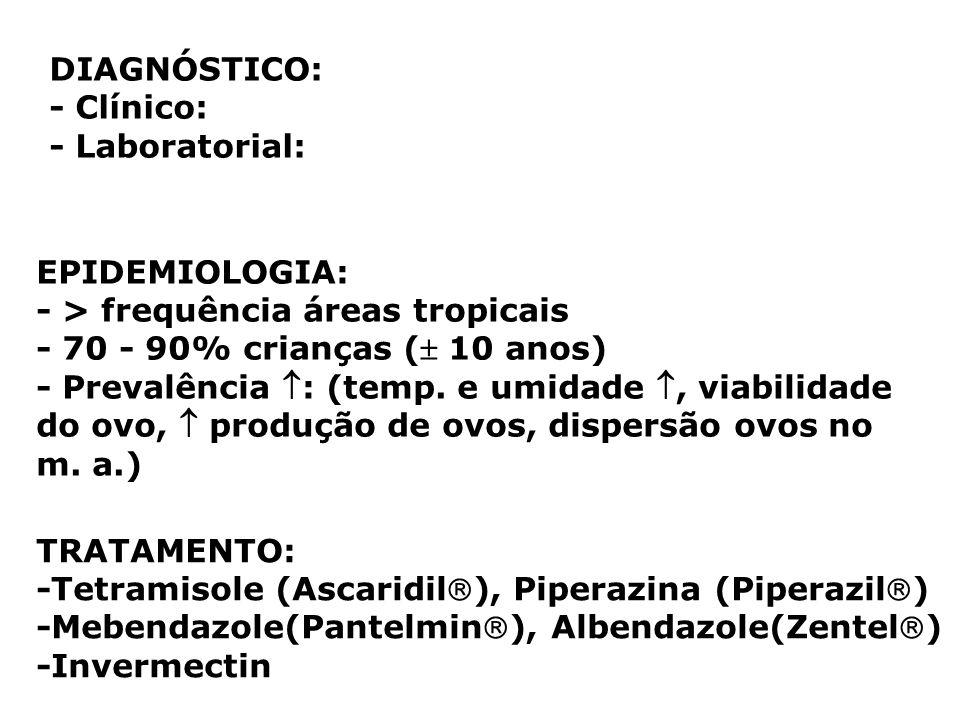 DIAGNÓSTICO: - Clínico: - Laboratorial: EPIDEMIOLOGIA: - > frequência áreas tropicais - 70 - 90% crianças ( 10 anos) - Prevalência : (temp. e umidade,