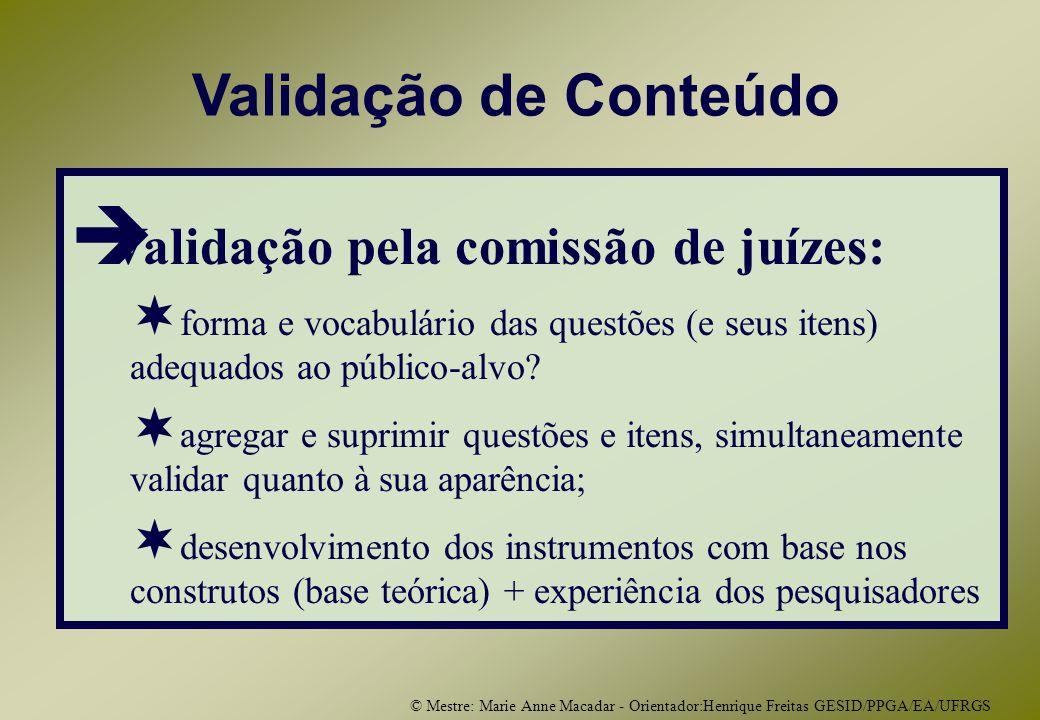 © Mestre: Marie Anne Macadar - Orientador:Henrique Freitas GESID/PPGA/EA/UFRGS Validação de Conteúdo Validação pela comissão de juízes: forma e vocabulário das questões (e seus itens) adequados ao público-alvo.