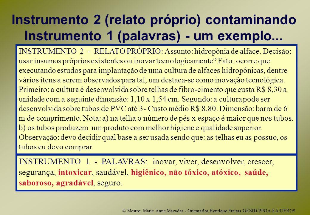 © Mestre: Marie Anne Macadar - Orientador:Henrique Freitas GESID/PPGA/EA/UFRGS Instrumento 2 (relato próprio) contaminando Instrumento 1 (palavras) - um exemplo...