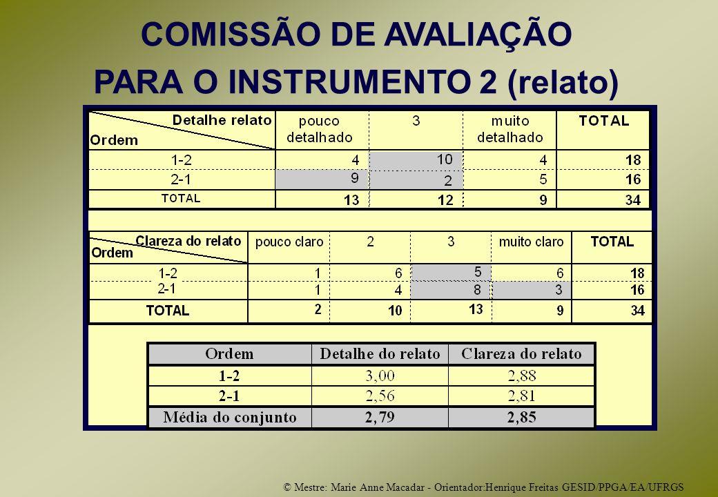 © Mestre: Marie Anne Macadar - Orientador:Henrique Freitas GESID/PPGA/EA/UFRGS COMISSÃO DE AVALIAÇÃO PARA O INSTRUMENTO 2 (relato)