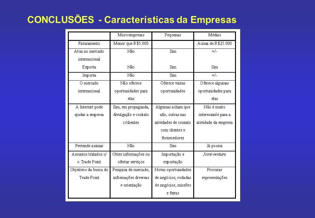 CONCLUSÕES - Características da Empresas