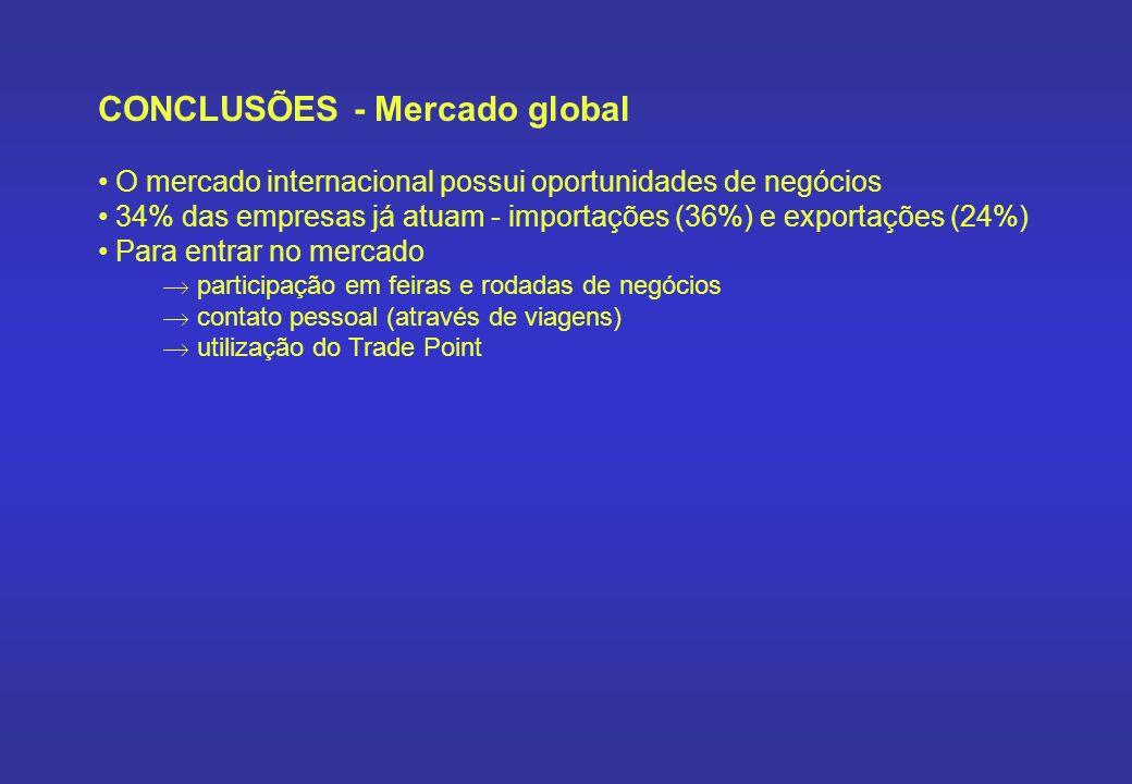 CONCLUSÕES - Mercado global O mercado internacional possui oportunidades de negócios 34% das empresas já atuam - importações (36%) e exportações (24%)