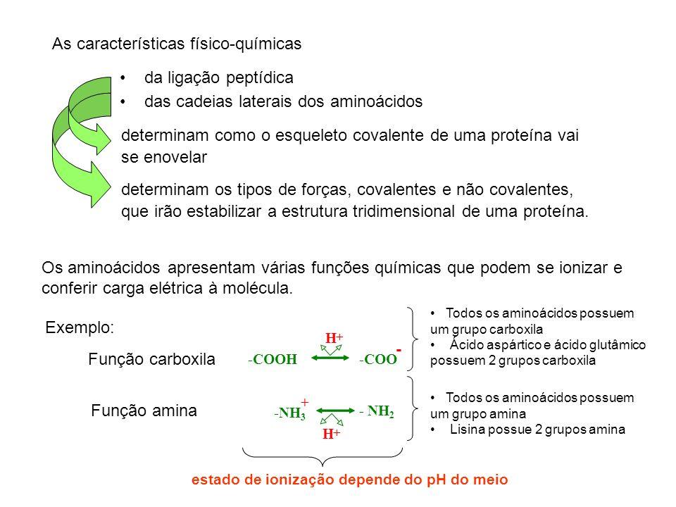 As características físico-químicas da ligação peptídica das cadeias laterais dos aminoácidos Os aminoácidos apresentam várias funções químicas que pod