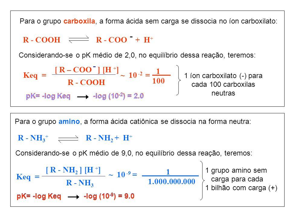 R - COOHR - COO + H + Para o grupo carboxila, a forma ácida sem carga se dissocia no íon carboxilato: Considerando-se o pK médio de 2,0, no equilíbrio