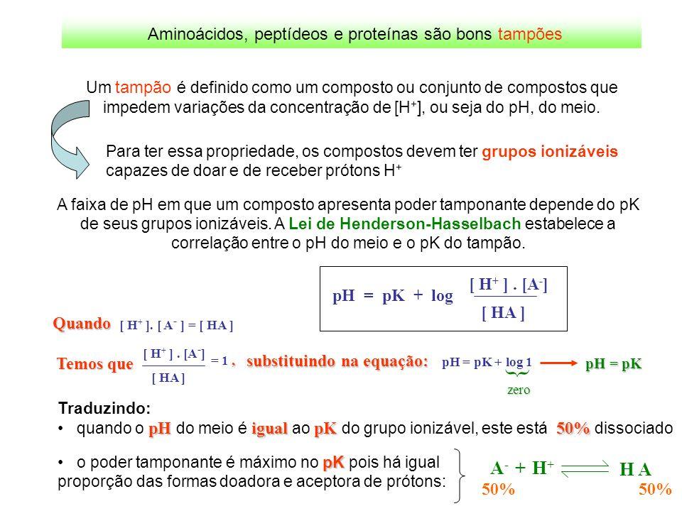 Aminoácidos, peptídeos e proteínas são bons tampões Um tampão é definido como um composto ou conjunto de compostos que impedem variações da concentraç