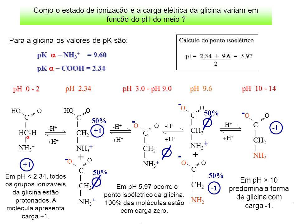 pK NH 3 + = 9.60 pK COOH = 2.34 Cálculo do ponto isoelétrico pI = 2.34 + 9.6 = 5.97 2 +1 -H+-H+ +H++H+ -H+-H+ +H++H+ 50% C CH 2 NH 3 + OHO C CH 2 + NH