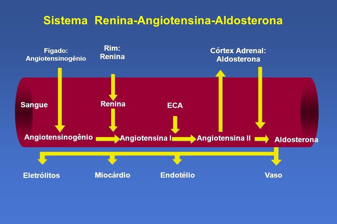 Sistema Renina-Angiotensina-Aldosterona EndotélioMiocárdio Eletrólitos Vaso ECA Angiotensinogênio Angiotensina IAngiotensina II Renina Sangue Córtex Adrenal: Aldosterona Fígado: Angiotensinogênio Aldosterona Rim: Renina