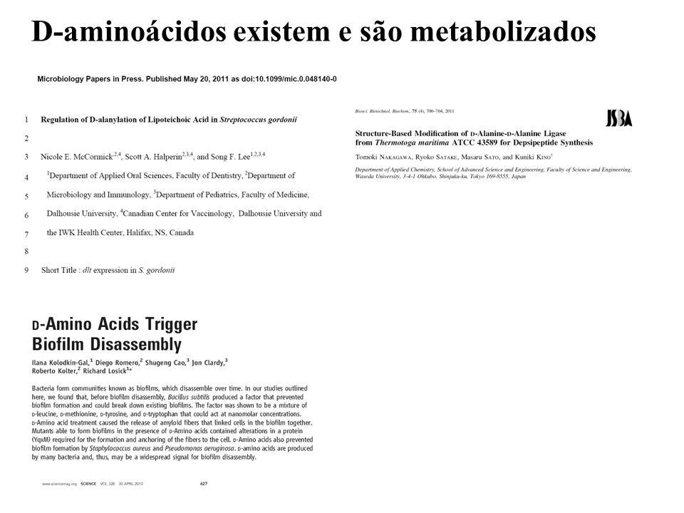 D-aminoácidos existem e são metabolizados