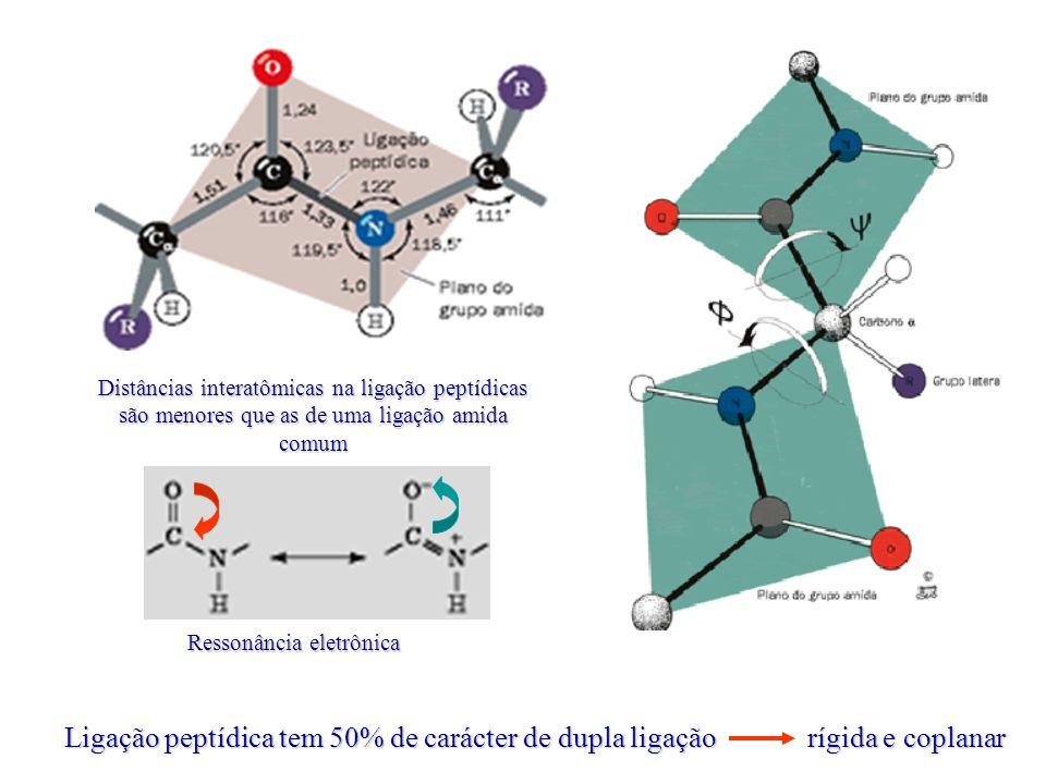 Ligação peptídica tem 50% de carácter de dupla ligação rígida e coplanar Ressonância eletrônica Distâncias interatômicas na ligação peptídicas são menores que as de uma ligação amida comum