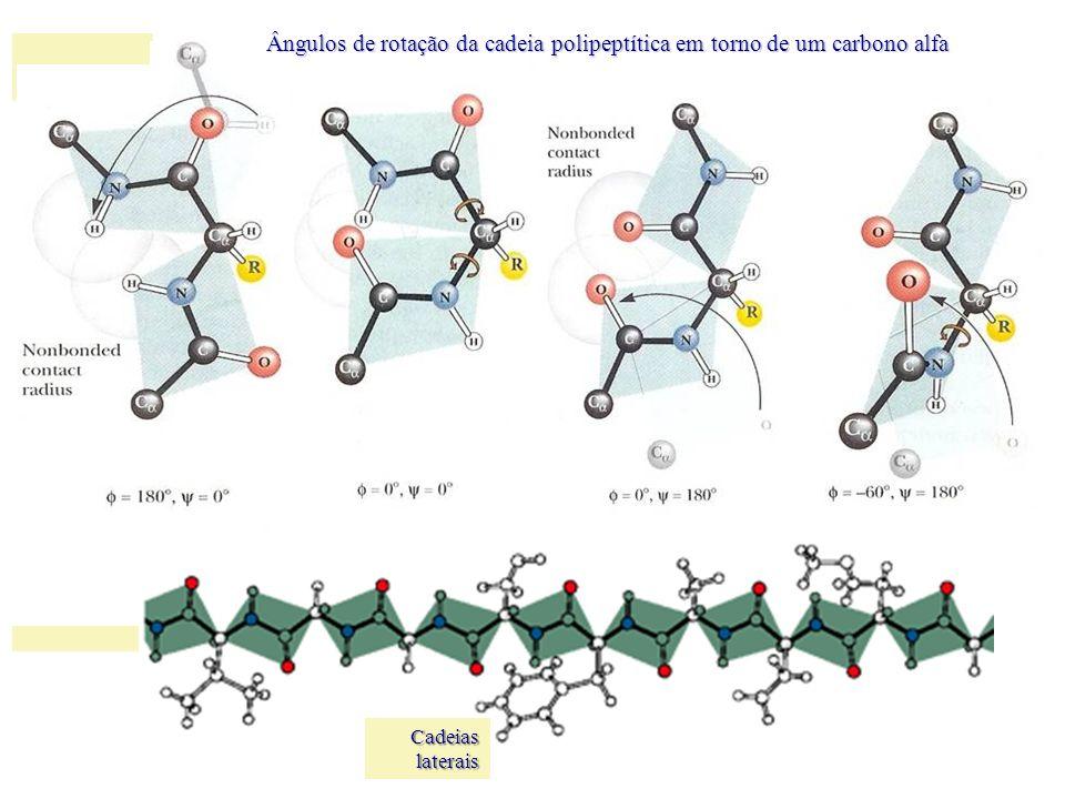 Cadeias laterais Ângulos de rotação da cadeia polipeptítica em torno de um carbono alfa