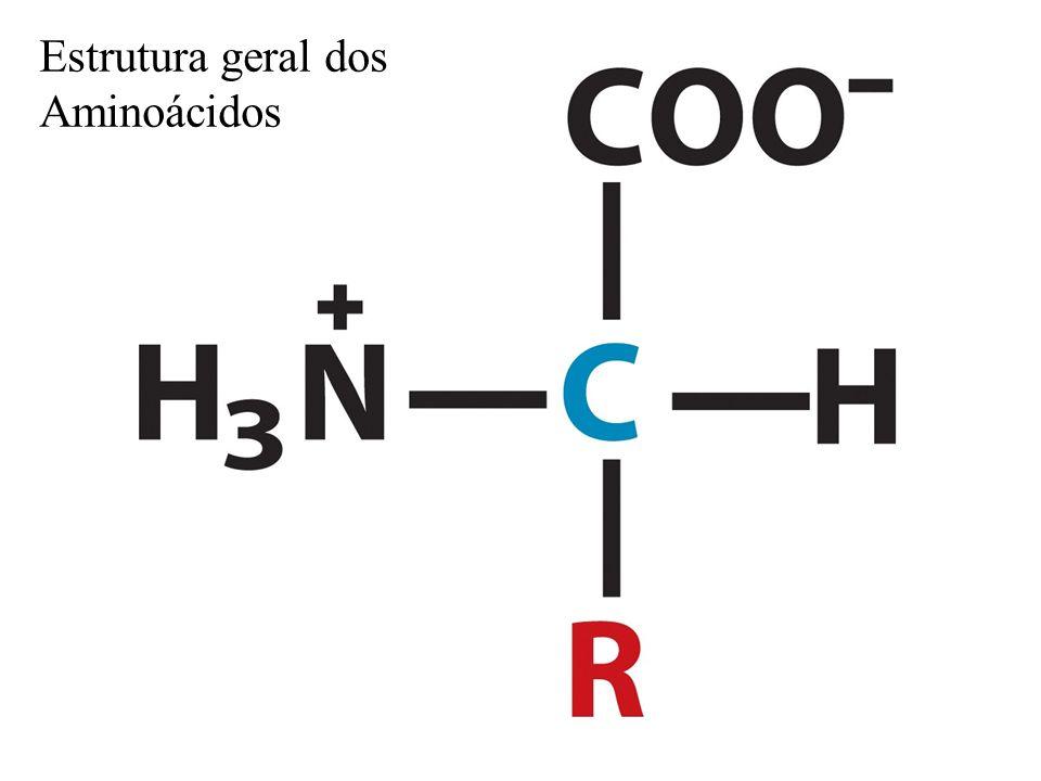 Quantos aminoácidos existem em sistemas biológicos?