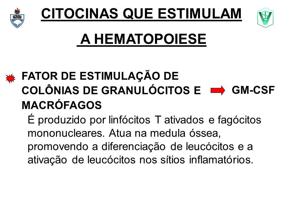 CITOCINAS QUE ESTIMULAM A HEMATOPOIESE FATOR DE ESTIMULAÇÃO DE COLÔNIAS DE GRANULÓCITOS E MACRÓFAGOS É produzido por linfócitos T ativados e fagócitos
