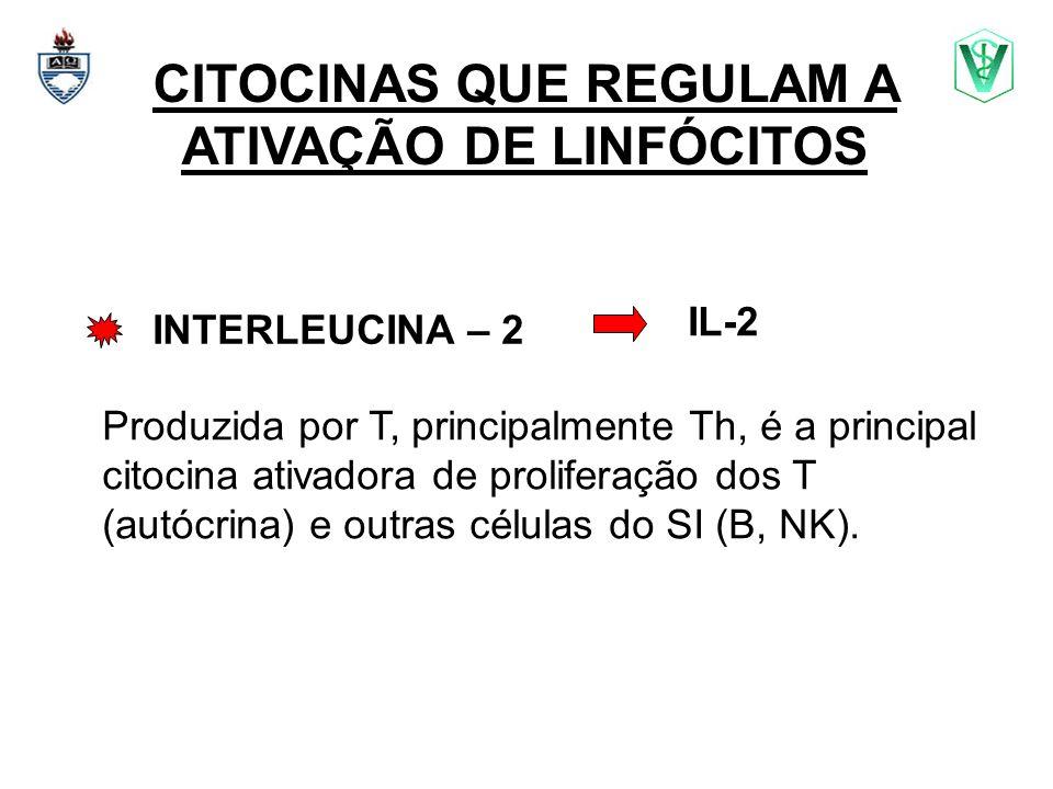 CITOCINAS QUE REGULAM A ATIVAÇÃO DE LINFÓCITOS INTERLEUCINA – 2 Produzida por T, principalmente Th, é a principal citocina ativadora de proliferação d