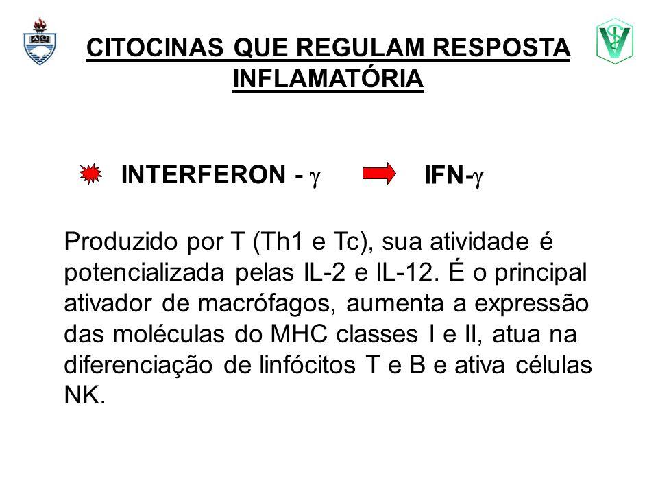 CITOCINAS QUE REGULAM RESPOSTA INFLAMATÓRIA INTERFERON - Produzido por T (Th1 e Tc), sua atividade é potencializada pelas IL-2 e IL-12. É o principal