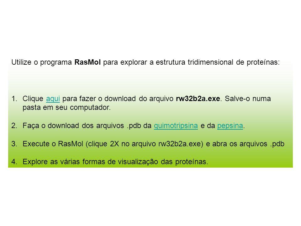 Utilize o programa RasMol para explorar a estrutura tridimensional de proteínas: 1.Clique aqui para fazer o download do arquivo rw32b2a.exe. Salve-o n
