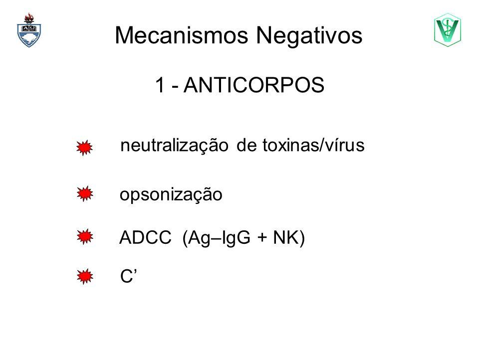 Mecanismos Negativos 2 – REDE IDIOTÍPICA paratopo = é o conj de det Ag do idiotopo idiotipo = corresponde à região V idiotopo = corresponde ao det.