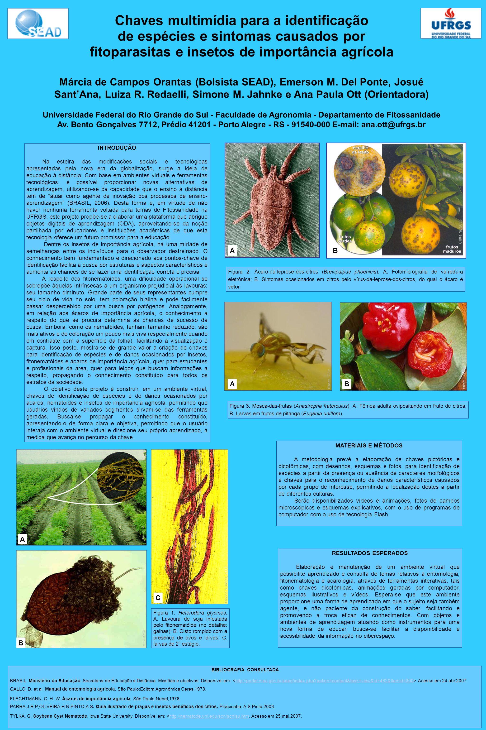 Chaves multimídia para a identificação de espécies e sintomas causados por fitoparasitas e insetos de importância agrícola Márcia de Campos Orantas (B