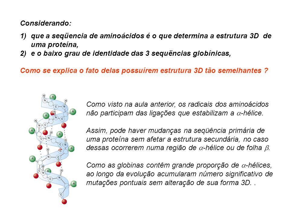Hemoglobinopatias Como existem 4 alelos de cadeia e 2 de cadeia e xpressos co-dominantemente, são conhecidos mais mutantes de cadeia (produzem 50 % de Hb anômala) do que de cadeia (produção de 25 % d e Hb anômala).