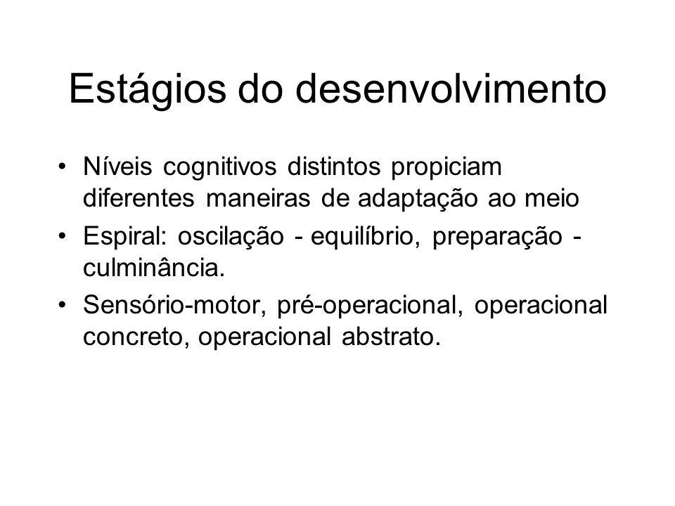 Estágios do desenvolvimento Níveis cognitivos distintos propiciam diferentes maneiras de adaptação ao meio Espiral: oscilação - equilíbrio, preparação