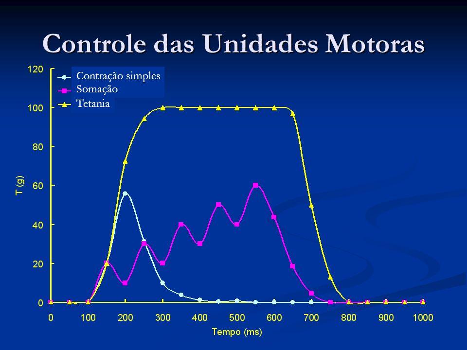 Controle das Unidades Motoras Contração simples Somação Tetania
