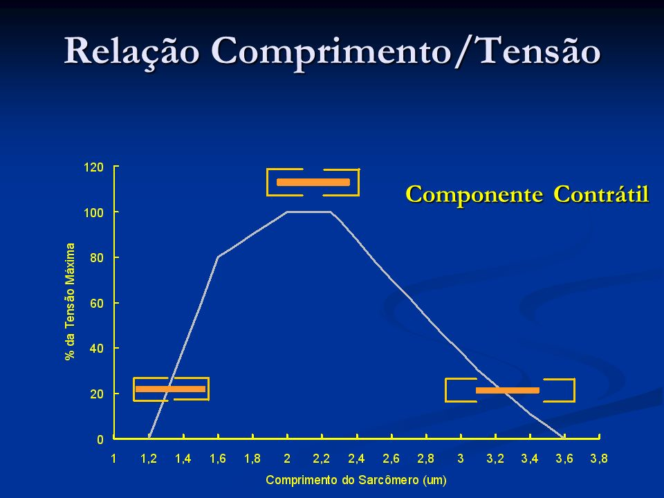 Relação Comprimento/Tensão Componente Contrátil