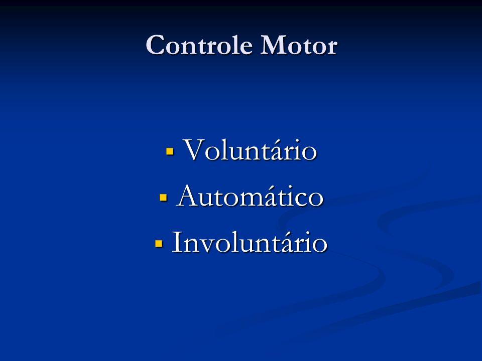 Controle Motor Voluntário Voluntário Automático Automático Involuntário Involuntário