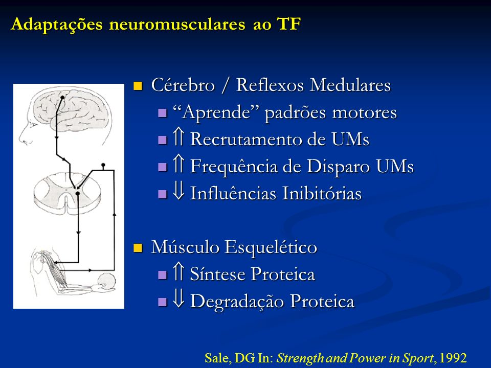 Sale, DG In: Strength and Power in Sport, 1992 Cérebro / Reflexos Medulares Cérebro / Reflexos Medulares Aprende padrões motores Aprende padrões motor