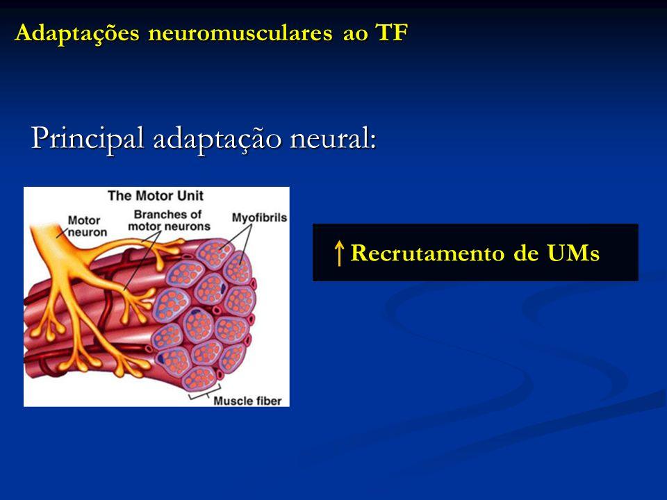 Recrutamento de UMs Adaptações neuromusculares ao TF Principal adaptação neural: