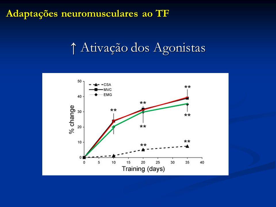 Ativação dos Agonistas Ativação dos Agonistas Adaptações neuromusculares ao TF