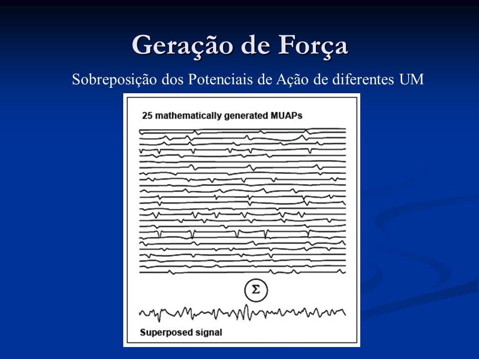 Sobreposição dos Potenciais de Ação de diferentes UM Geração de Força