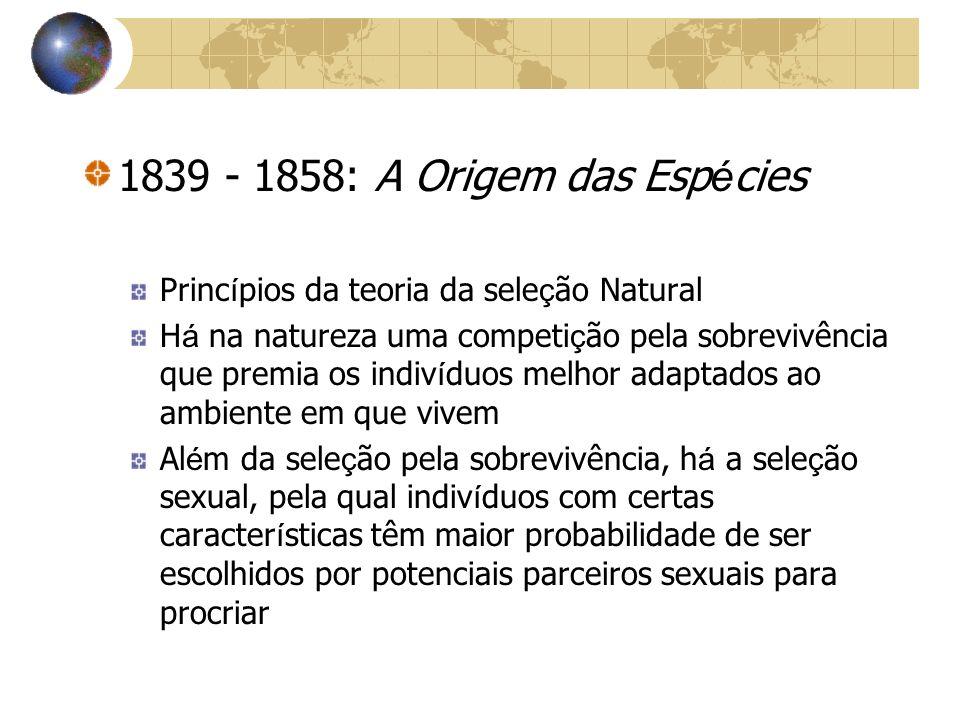 1839 - 1858: A Origem das Esp é cies Princ í pios da teoria da sele ç ão Natural H á na natureza uma competi ç ão pela sobrevivência que premia os ind